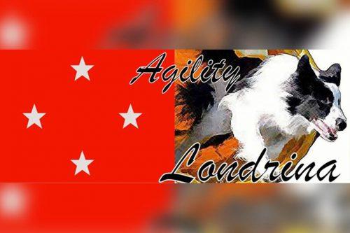 Agility Londrina