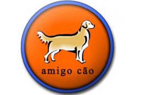 Amigo Cão – Agility e Adestramento