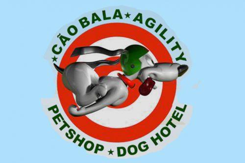 Cão Bala Agility