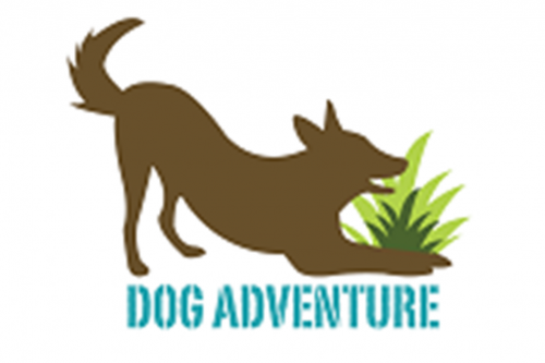 Dog Adventure – Centro de Comportamento Canino