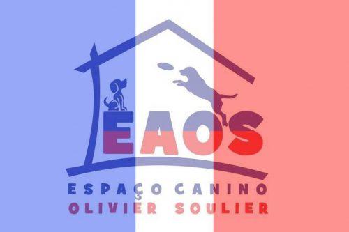 EAOS Escola de Adestramento – Olivier Soulier