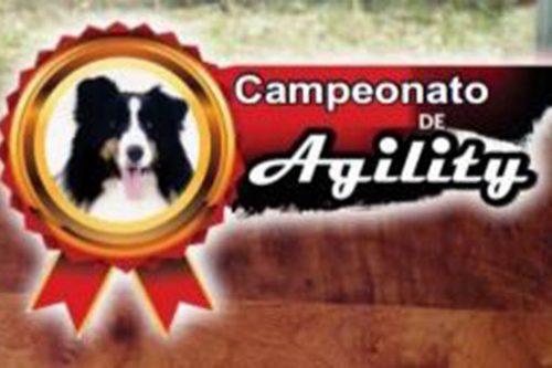 IV Campeonato Paraibano de Agility