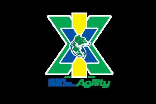 XIX Campeonato Brasileiro de Agility