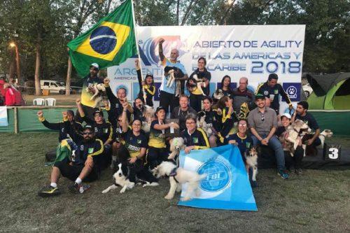 Delegação Brasileira no AyC 2018 – AyC 2019 no Brasil