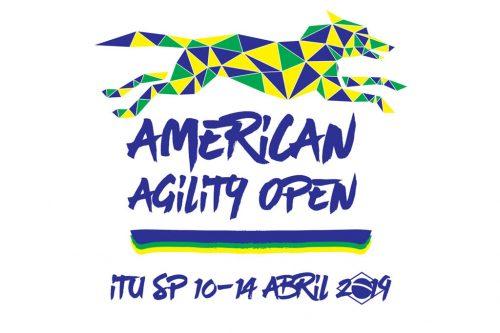 American Agility Open 2019