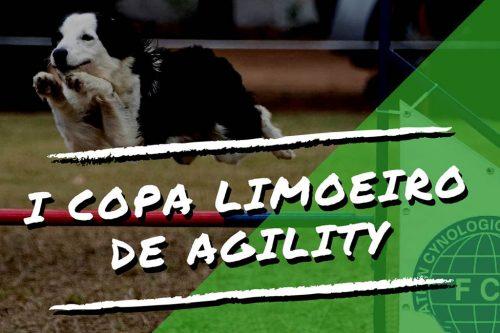 I Copa Limoeiro de Agility – PE – 02/09/2018
