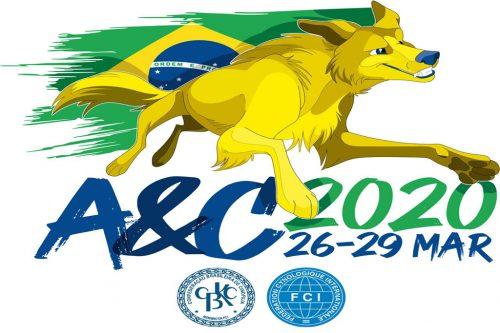 Regras para Definição do Time que representará o Brasil no AyC 2020