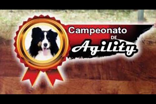 3ª e 4ª Etapas – IV Campeonato Paraibano de Agility – 24 e 25/02/2018