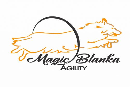 Magic Blanka Agility