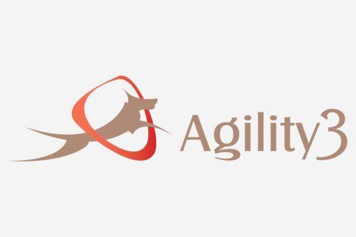 Copa Agility 3 – Estação 4 Patas
