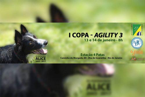 1ª e 2ª Etapas – I Copa Agility3 – Guaratiba – RJ – 13 e 14/01/2018