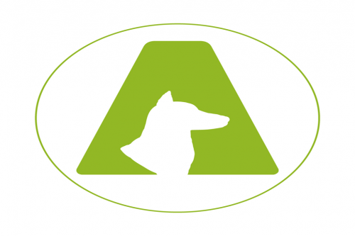 Animo Agility Team