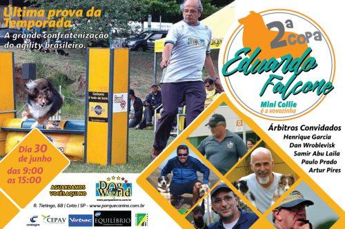 II Copa Dr. Eduardo Falcone